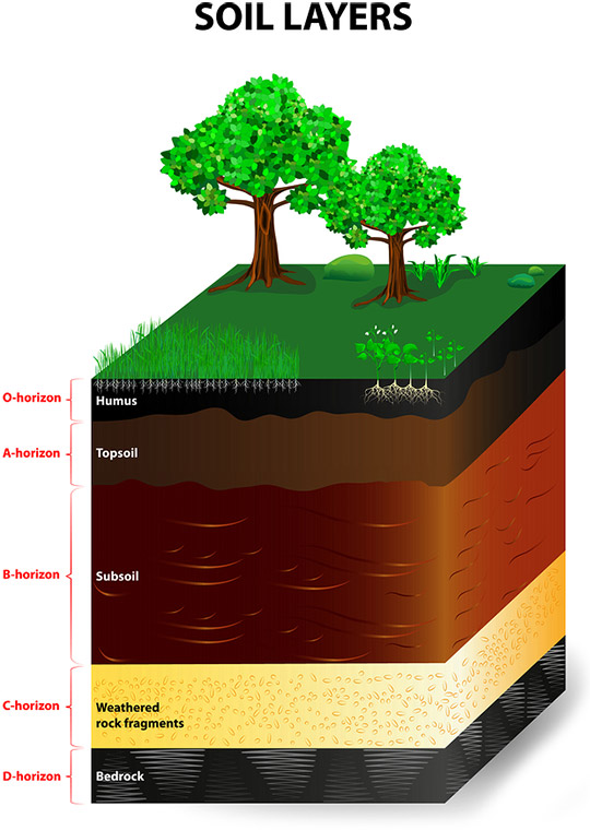 illustration-soil-layers